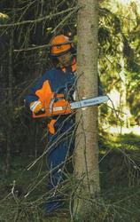 спиливание деревьев киев 233 03 70